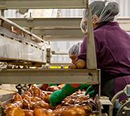 Máster en Control de Calidad de Alimentos, nutrición y dietética