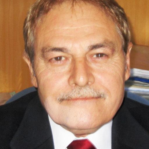 Dr. D. Fernando  Giner de la Fuente - DIRECTOR